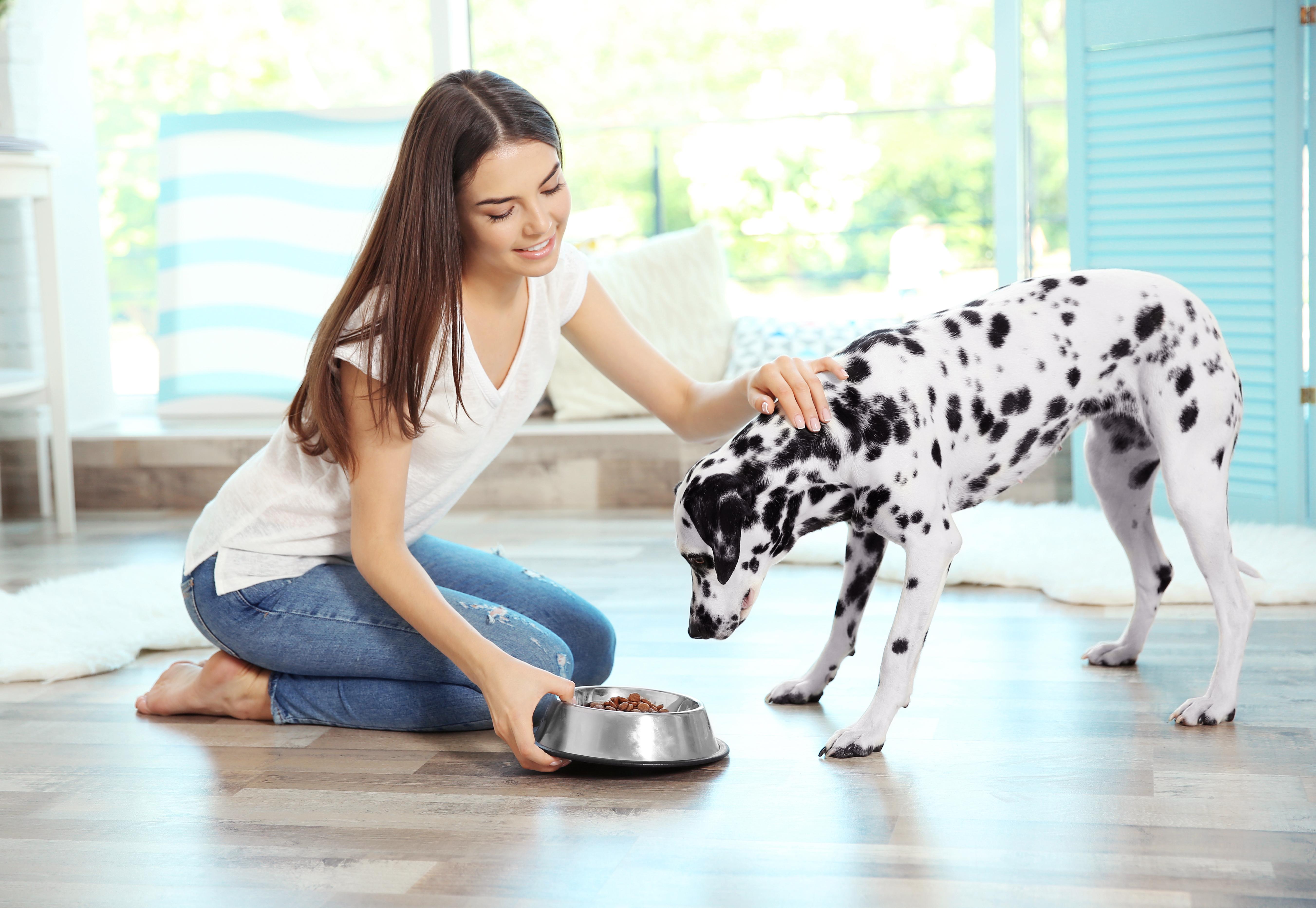 girlfeedingdog