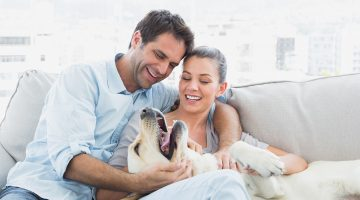 pet-insurance-blog